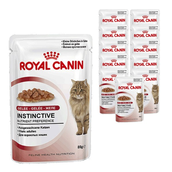 Royal Canin Katzenfutter Instinctive in Gelee 12x85g
