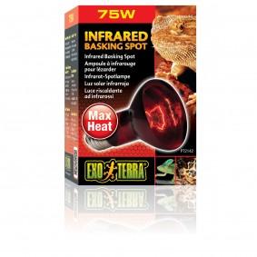 Exo Terra Infrared Basking Spot 4+1 gratis 75 Watt