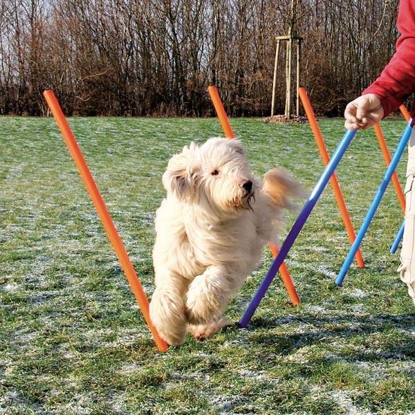 Trixie Dog Activity Agility Slalom Stangen
