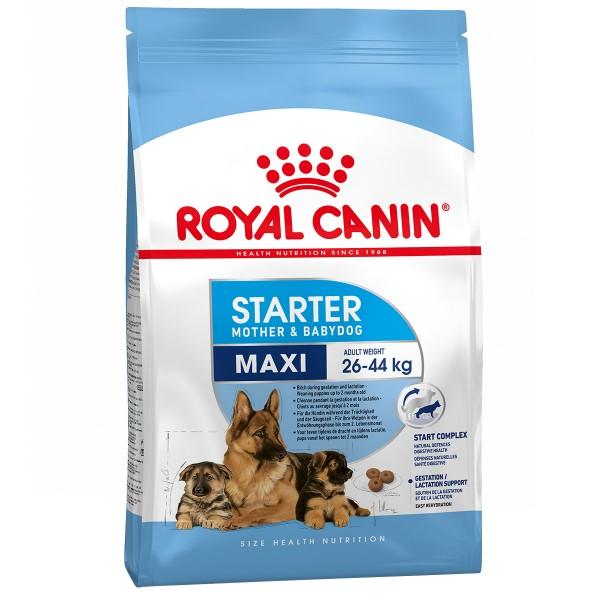 royal canin maxi starter g nstig kaufen bei zooroyal. Black Bedroom Furniture Sets. Home Design Ideas