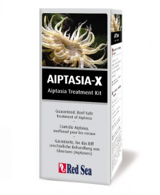 Red Sea AIPTASIA-X / Glasrosen-EX