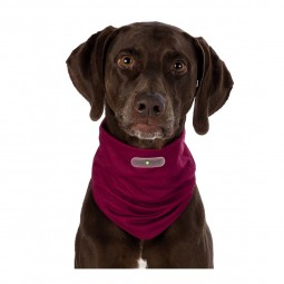 Trixie Insect Shield® Dog Loop bordeaux