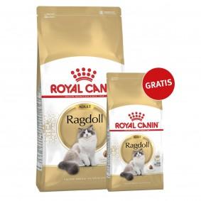 Royal Canin Katzenfutter Ragdoll 10kg+2kg gratis