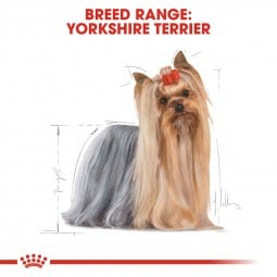 ROYAL CANIN Yorkshire Terrier Adult Hundefutter trocken