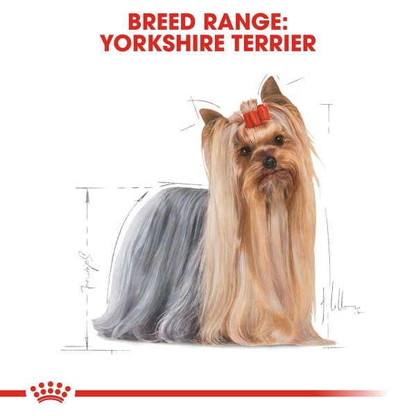 ROYAL CANIN Yorkshire Terrier Adult granule pro psy