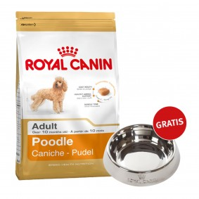 Royal Canin Poodle Adult 7,5kg + Edelstahlnapf silber gratis