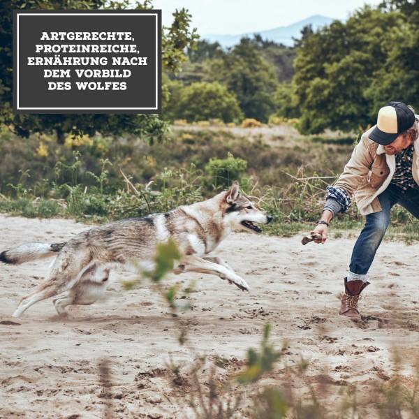 MOON Ranger Wildschwein & Hirsch