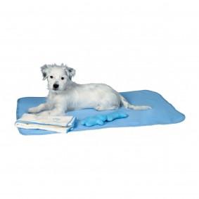 Set chiot - couverture, jouet et serviette bleu clair
