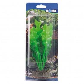 Hobby Aquariumdekoration Echinodrus 20 cm