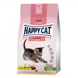 Happy Cat Young Kitten Land Geflügel