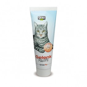 Grau Futterergänzung Cat Care Plus Paste Gelenk 100g