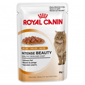 Royal Canin Intense Beauty in Gelee 48x85g
