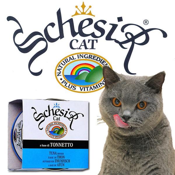 Schesir Pur Katzenfutter 14x85g-Dosen