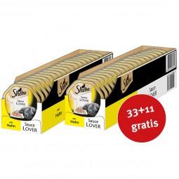 Sheba Katzenfutter Sauce Lover Huhn 44x85g