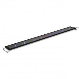 Aqualight Hi-Lumen LED-Aufsetzleuchte