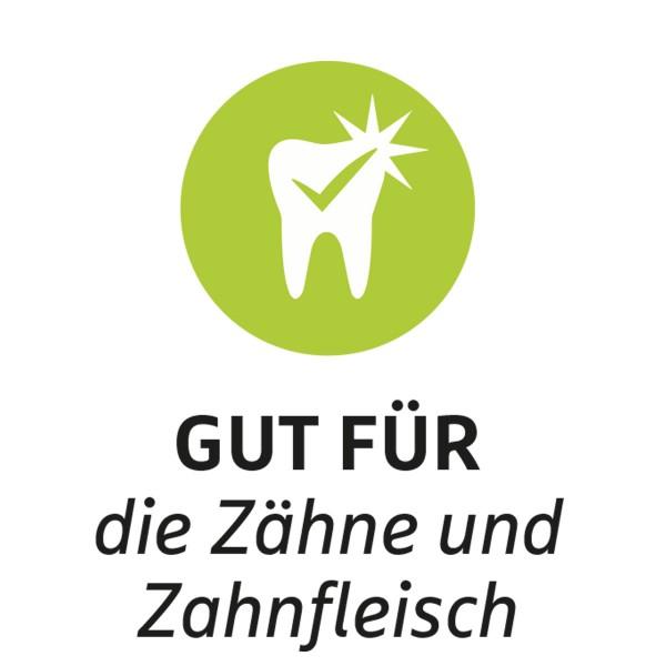 ZooRoyal Hundespielzeug Dental Knochen grün