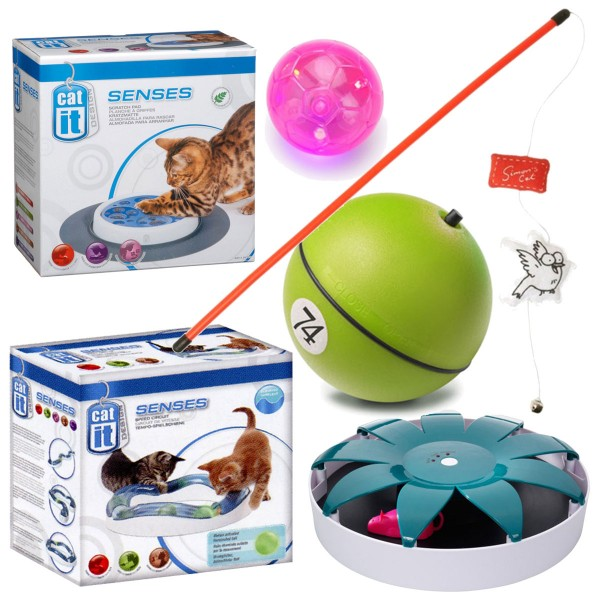 Spielzeugset für aktive Katzen