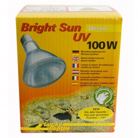 Lucky Reptile Bright Sun UV Desert