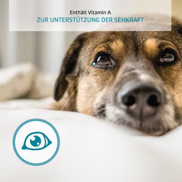 ZooRoyal Individual care - Senior / Light reich an Pute