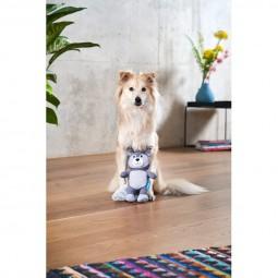 ZooRoyal Hundespielzeug Waschbär grau & anthrazit
