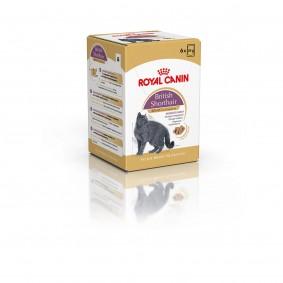 Royal Canin Katzenfutter British Shorthair 6er-Pack