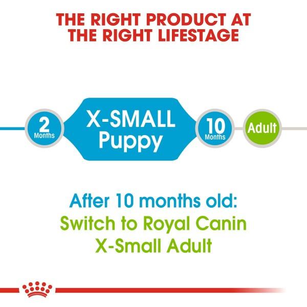 ROYAL CANIN X-SMALL Puppy Trockenfutter für Welpen sehr kleiner Hunderassen