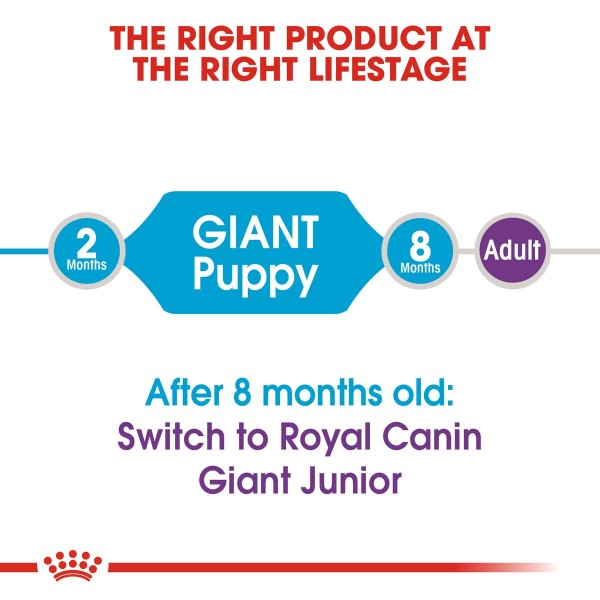 ROYAL CANIN Giant Puppy 3,5kg + Maxi Puppy in Soße 10x140g