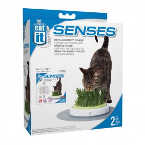 Catit Senses Gras Garten Set 2er Nachfüllpackung