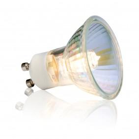 Exo Terra Sun Glo Ampoule halogène à lumière du jour