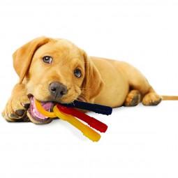 Nylabone Puppy Welpen Beißring Schlüsselbund Speck-Geschmack