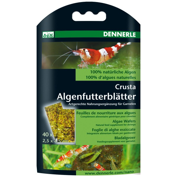 Dennerle Nano Algenfutterblätter 40 Stück