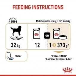 ROYAL CANIN Labrador Retriever Adult Stückchen in Soße Nassfutter für Hunde