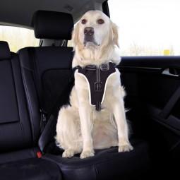 Trixie Dog Protect Sicherheitsgeschirr für Hunde
