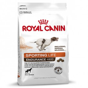 royal canin sporting life hundefutter online bei. Black Bedroom Furniture Sets. Home Design Ideas