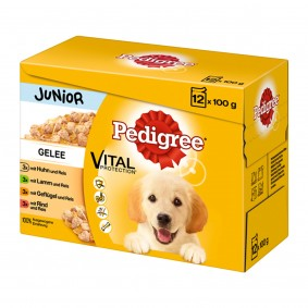 Pedigree Junior in Gelee Multipack 12x100g