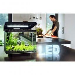 Juwel Aquarium Vio 40 LED