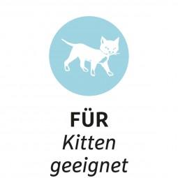 ZooRoyal Schmusekissen mit Katzenminze 3 Stück Design 1 & 2 & 3