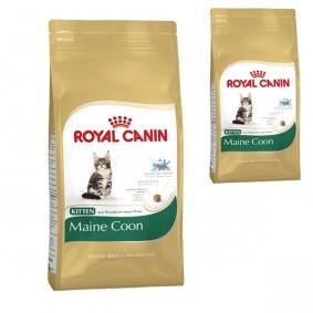 Royal Canin Katzenfutter Kitten Maine Coon 36 4 Kg + 400 g gratis