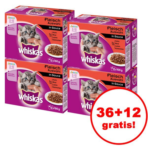 Whiskas Junior Fleischauswahl 12er Multipack 36 plus 12 gratis