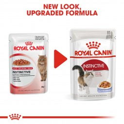 ROYAL CANIN INSTINCTIVE Katzenfutter nass in Gelee