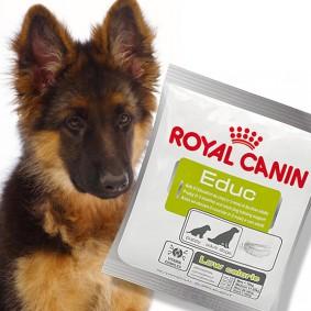 Royal Canin Educ Hundesnack 50g
