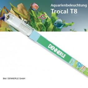 Dennerle Trocal de Luxe T8 Amazon Day Éclairage pour aquarium