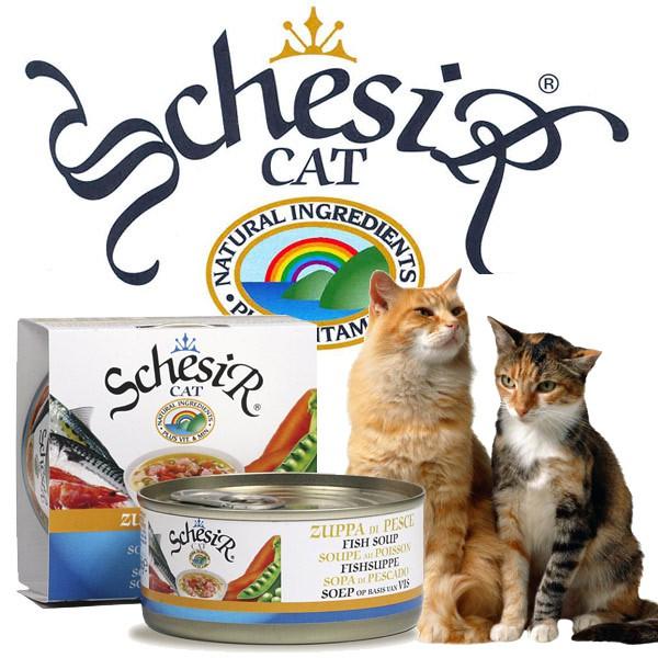 Schesir Katzenfutter in Brühe 14x70g-Dosen