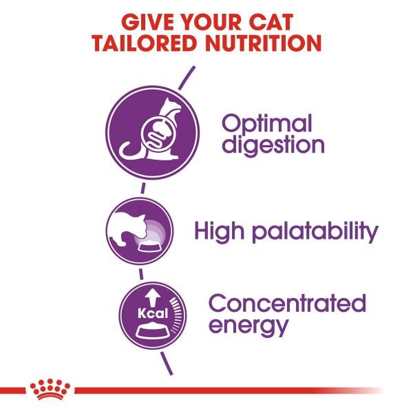 ROYAL CANIN SENSIBLE Trockenfutter für sensible Katzen