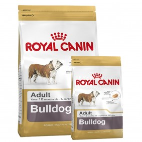 Royal Canin Bulldog Adult 12kg+3kg Gratis!