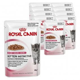 Royal Canin Katzenfutter Kitten Instinctive in Gelee 12 x 85g