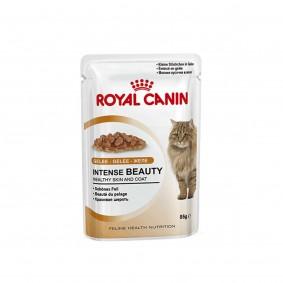Schipkau Annahütte, Herrnnmühle Angebote Royal Canin Katzenfutter Intense Beauty in Gelee 12x85g